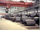 Hot-Rolled Plates with High Yield Strength for Col