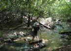 1 Applachian Trail Aug 2005 044