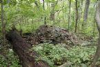 Indian Grave Applachian Trail Aug 2005 149
