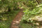 Lower Applachian Trail Aug 2005 152