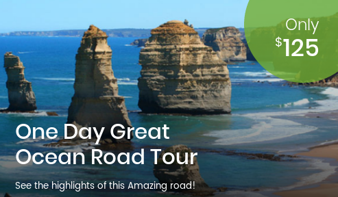One Day Tour Great Ocean Road