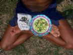Resize of lotus feet HCS avocado lime