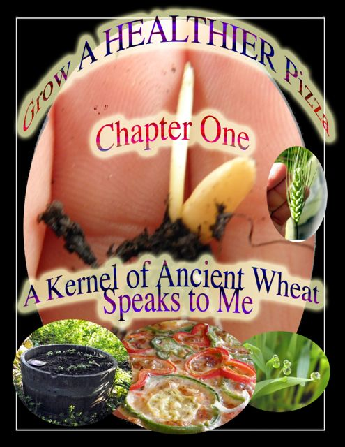 http://curezone.com/upload/Blogs/Your_Enchanted_Gardener/1_Kernel_of_Wheat_speaks_to_me_medium.jpg