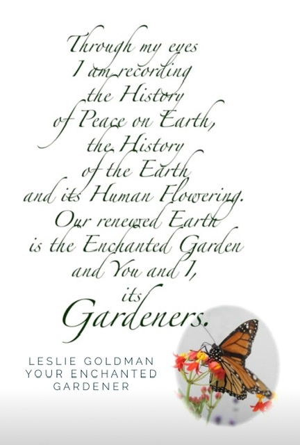 https://www.curezone.org/upload/Blogs/Your_Enchanted_Gardener/90FE6FDD_5BDB_4A16_A9FD_E6381864D0B7.jpeg