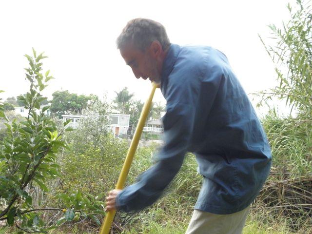 http://curezone.com/upload/Blogs/Your_Enchanted_Gardener/Andrew_Blume_11.jpg