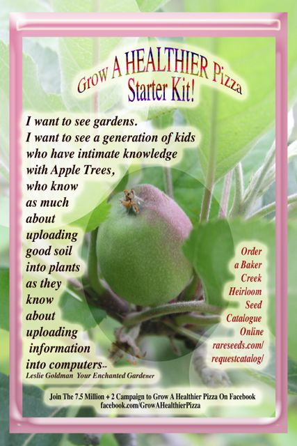 http://curezone.com/upload/Blogs/Your_Enchanted_Gardener/Apple_tree_Grow_A_Healthier_Pizza_YourEG1.jpg