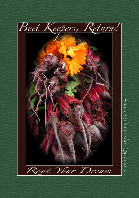 http://curezone.com/upload/Blogs/Your_Enchanted_Gardener/BEET_ART_FALL_092.jpg