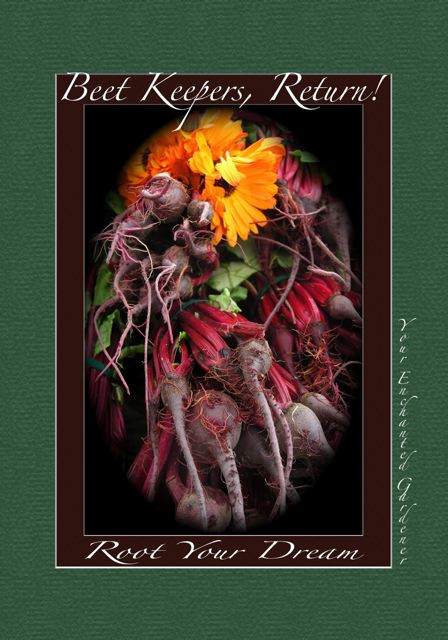 http://curezone.com/upload/Blogs/Your_Enchanted_Gardener/BEET_ART_FALL_09_7_Medium.jpg