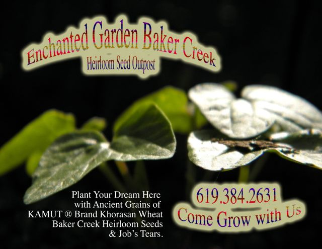 http://curezone.com/upload/Blogs/Your_Enchanted_Gardener/Baker_Creek_Enchanted_Garden_Outpost_medium.jpg