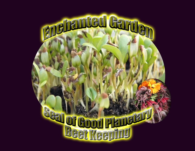 http://curezone.com/upload/Blogs/Your_Enchanted_Gardener/Beet_Keepers_Planetary_Seal_H_w_o_alfalfa.jpg
