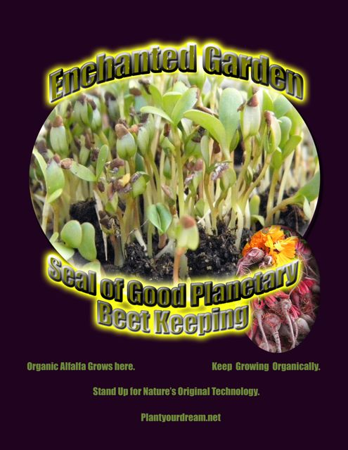 http://curezone.com/upload/Blogs/Your_Enchanted_Gardener/Beet_Keepers_Planetary_Seal_V_alfalfa_M_wrds.jpg