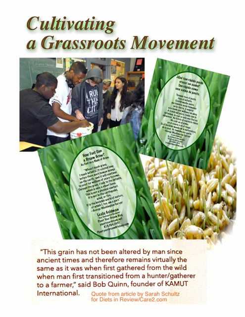http://curezone.com/upload/Blogs/Your_Enchanted_Gardener/Cultivating_a_Grassroots_Movement.jpg