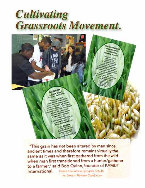 http://curezone.com/upload/Blogs/Your_Enchanted_Gardener/Cultivating_a_Grassroots_Movement_2_medium.jpg