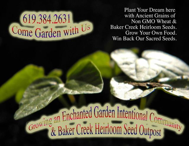 http://curezone.com/upload/Blogs/Your_Enchanted_Gardener/ENCHANTED_GARDEN_BAKER_CREEK_OUTPOST_2014.jpg