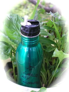 http://curezone.com/upload/Blogs/Your_Enchanted_Gardener/Eco_usuable_water_bottle_2.jpg