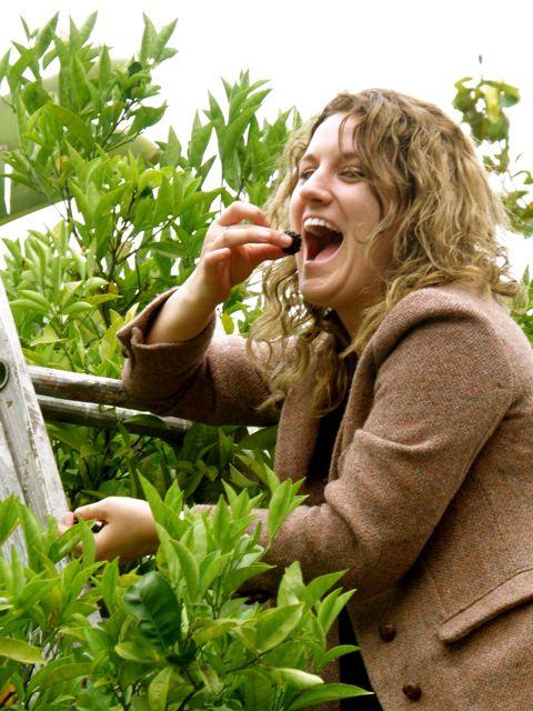 http://curezone.com/upload/Blogs/Your_Enchanted_Gardener/Erica_eating_blackberry.jpg