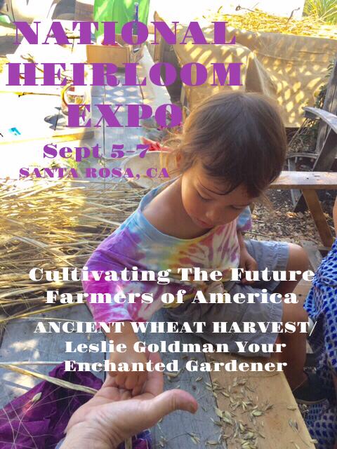 http://curezone.com/upload/Blogs/Your_Enchanted_Gardener/FullSizeRender12.jpg