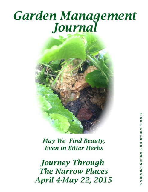 http://curezone.com/upload/Blogs/Your_Enchanted_Gardener/GMJ_Omer_Finding_Beauty_Journal_Cover_medium.jpg