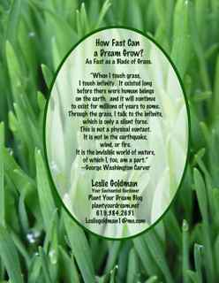 http://curezone.com/upload/Blogs/Your_Enchanted_Gardener/Grass_quote_Washington_Carver_Leslie_Goldman_YourEG32.jpg