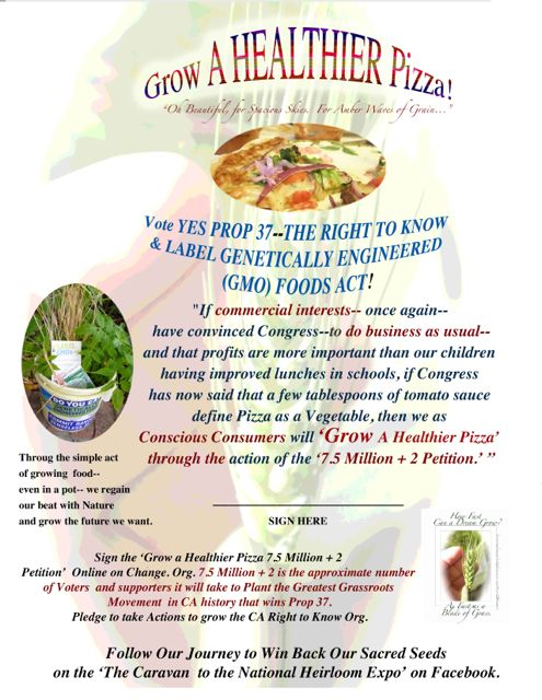 http://curezone.com/upload/Blogs/Your_Enchanted_Gardener/Grow_a_Healthier_Pizza_Petition_V2_Medium.jpg