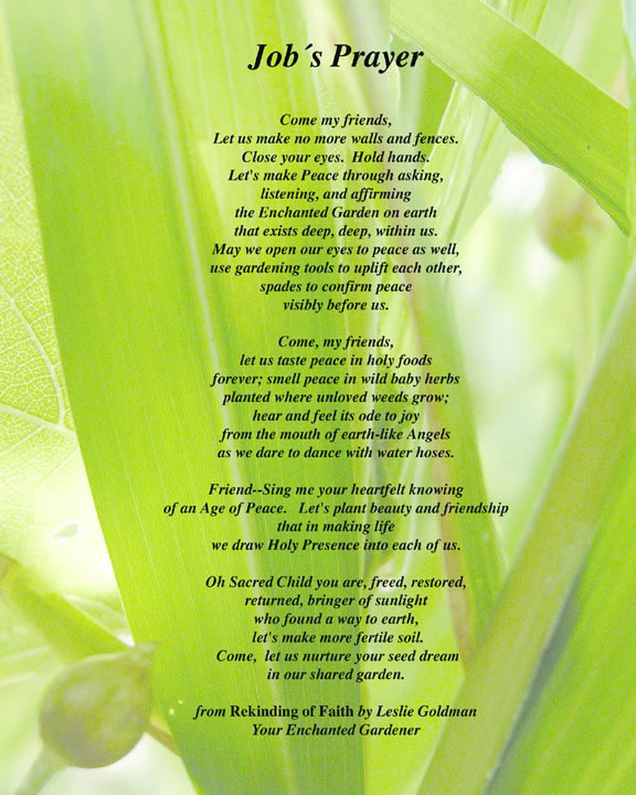 http://curezone.com/upload/Blogs/Your_Enchanted_Gardener/Job_s_Prayer_ALL_PRINT_web.jpg