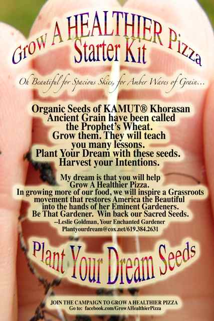 http://curezone.com/upload/Blogs/Your_Enchanted_Gardener/KAMUT%AE_SEED_PACKET_SPRING_2013_Medium1.jpg