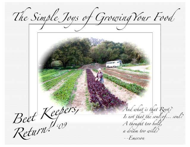 http://curezone.com/upload/Blogs/Your_Enchanted_Gardener/KEEP_the_BEET_Campaign_09_31.jpg