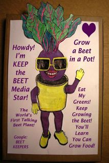 http://curezone.com/upload/Blogs/Your_Enchanted_Gardener/KEEP_the_BEET_Grow_a_beet_in_a_pot.jpg