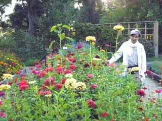 http://curezone.com/upload/Blogs/Your_Enchanted_Gardener/Leslie_Goldman_Luther_Burbank_Home_Garden.jpg