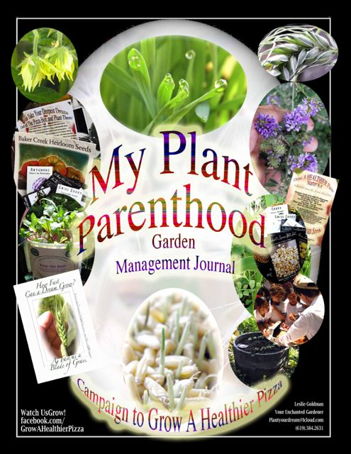http://curezone.com/upload/Blogs/Your_Enchanted_Gardener/MY_GMJ_Plant_Parenthood_Cover_2013_Your_EG.jpg