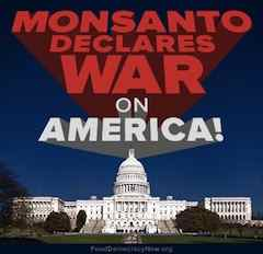 http://curezone.com/upload/Blogs/Your_Enchanted_Gardener/Monsanto_Declares_War_on_America_sm_copy.jpg