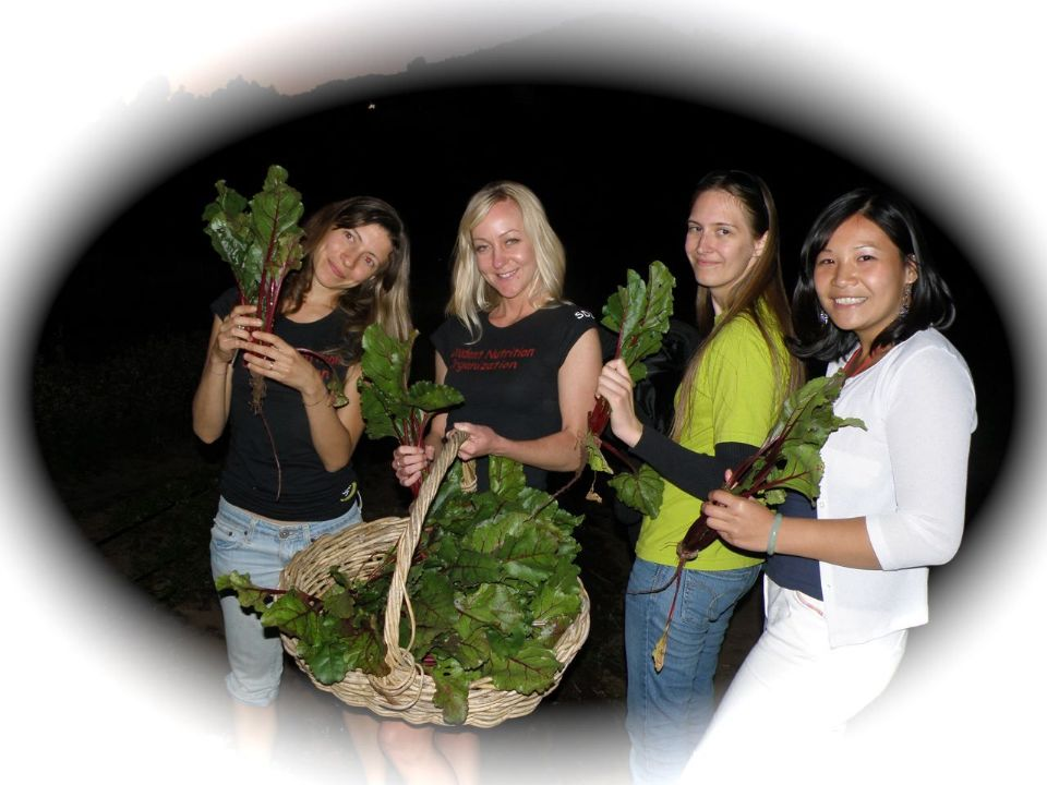 http://curezone.com/upload/Blogs/Your_Enchanted_Gardener/Nutrition_Club_SDSU.jpg