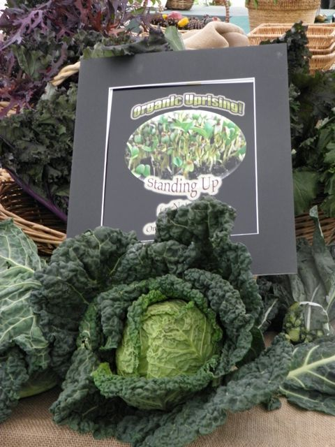 http://curezone.com/upload/Blogs/Your_Enchanted_Gardener/Organic_Uprising_can_be_an_outcome_of_the_GMO_LABEl_Initiative.jpg