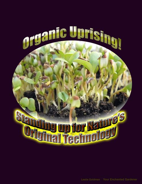 http://curezone.com/upload/Blogs/Your_Enchanted_Gardener/Organic_Uprisingx_ART_medium.jpg