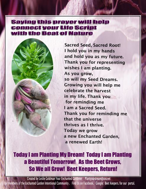 http://curezone.com/upload/Blogs/Your_Enchanted_Gardener/PAGE_ONE_PAC_SYM_Seed_Dream_big1.jpg