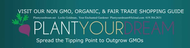 http://curezone.com/upload/Blogs/Your_Enchanted_Gardener/PLANT_YOUR_DREAM_Blog_Shopping_Guide_Logos1.jpg