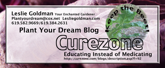 http://curezone.com/upload/Blogs/Your_Enchanted_Gardener/Plant_Your_Dream_Blog_72_web.jpg