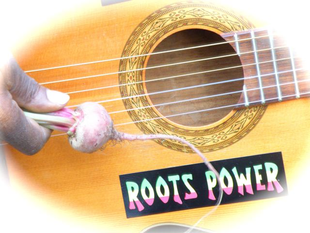 http://curezone.com/upload/Blogs/Your_Enchanted_Gardener/ROOTS_power.jpg