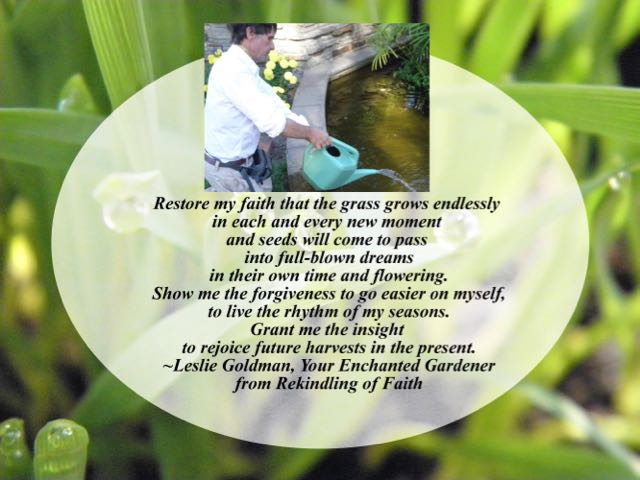 http://curezone.com/upload/Blogs/Your_Enchanted_Gardener/Rekindling_of_Faith_quote_on_Grass.jpg