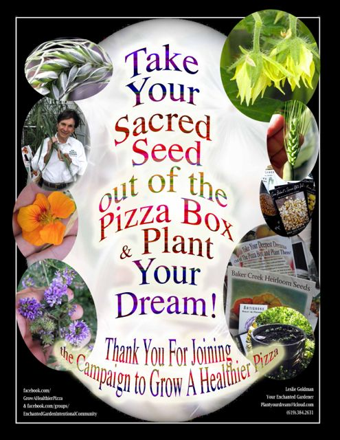 http://curezone.com/upload/Blogs/Your_Enchanted_Gardener/SACRED_SEED_OUT_OF_BOX_July_4_Medium1.jpg