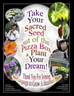 http://curezone.com/upload/Blogs/Your_Enchanted_Gardener/SACRED_SEED_OUT_OF_BOX_SMALL_2.jpg