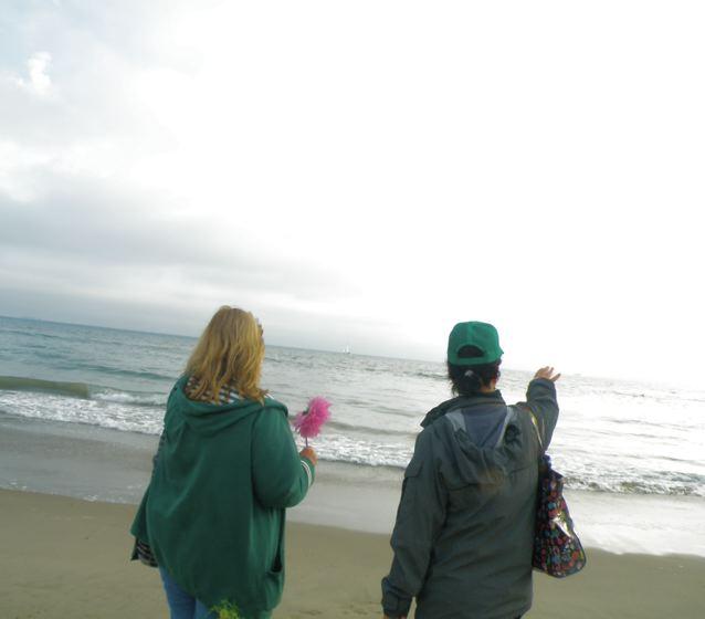 http://curezone.com/upload/Blogs/Your_Enchanted_Gardener/Sending_Health_Energy_to_the_Oceans.jpg