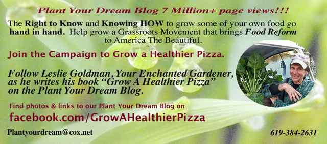 http://curezone.com/upload/Blogs/Your_Enchanted_Gardener/Spring_Biz_Card_2013_Campaign_to_Grow_A_Healthier_Pizza_Medium1.jpg