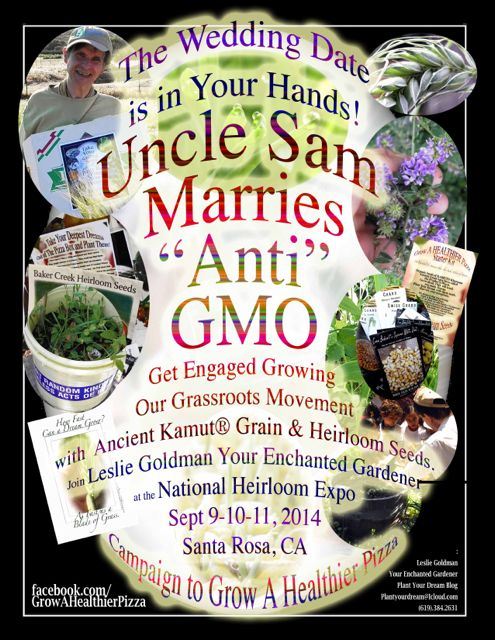 http://curezone.com/upload/Blogs/Your_Enchanted_Gardener/UNCLE_SAM_MARRIES_ANTI_GMO_Get_Engaged_M2.jpg