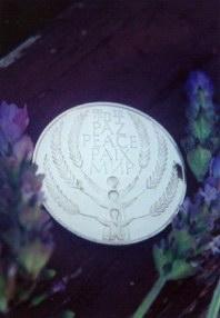 http://curezone.com/upload/Blogs/Your_Enchanted_Gardener/U_N_Peace_Medal.jpg