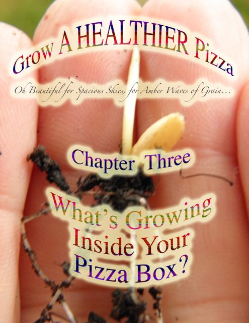 http://curezone.com/upload/Blogs/Your_Enchanted_Gardener/What_s_In_Your_Pizza_Box_2_USE_3_1.jpg