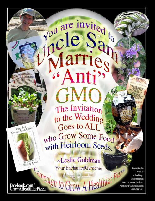 http://curezone.com/upload/Blogs/Your_Enchanted_Gardener/_10_UNCLE_SAM_MARRIES_ANTI_GMO_Leslie_Goldman_Medium.jpg