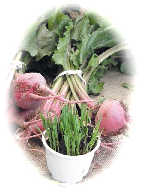 http://curezone.com/upload/Blogs/Your_Enchanted_Gardener/beet_and_grass_blog.jpg