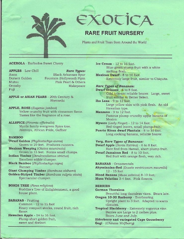 Order forms exotica rare fruit nursery by yourenchantedgardener blog entry - Checklist for your vegetable garden in august ...