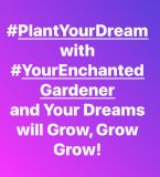 http://www.curezone.org/upload/Blogs/Your_Enchanted_Gardener/tn-8765CC34_1521_40AE_ACC0_FC9D276FB0F9.jpeg